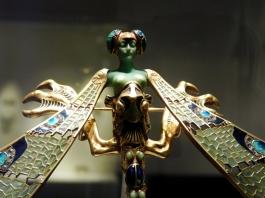 she-dragonfly