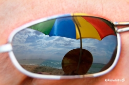 summer in the sunglass
